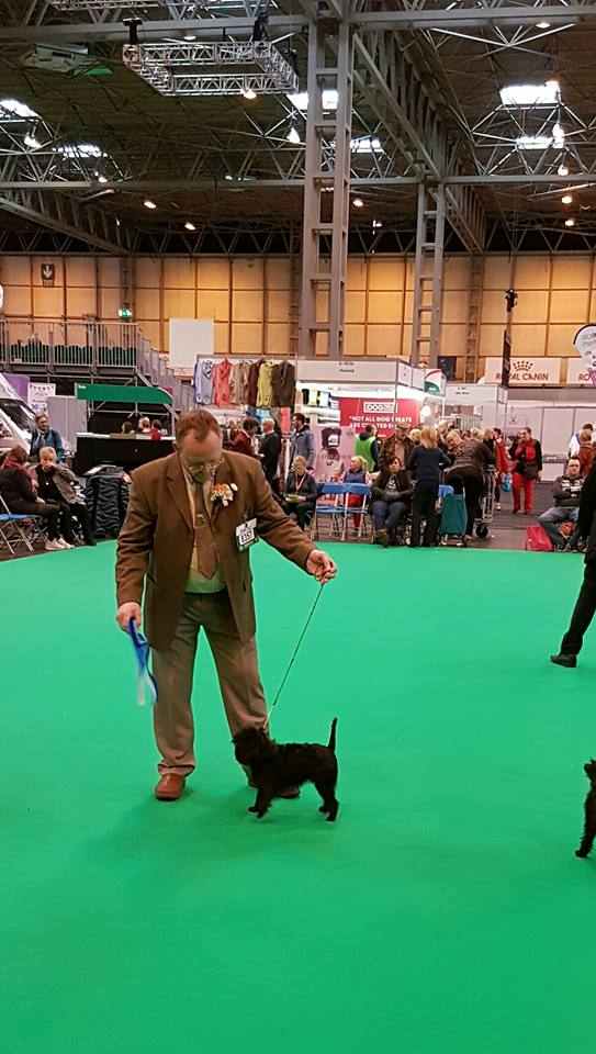 La Bonita 2nd place Crufts 2017